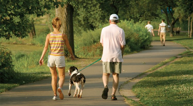 Man and Woman walking a large black and white dog with a green leash on a trail