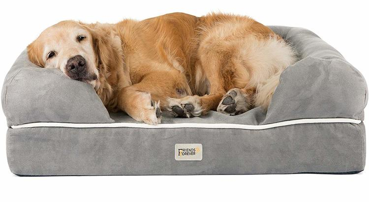 Old golden retriever laying on large grey dog bed